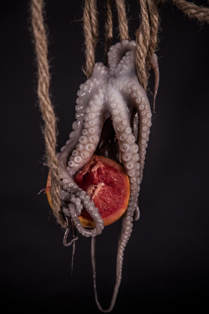 untitled, 2014 © veronica a. perez